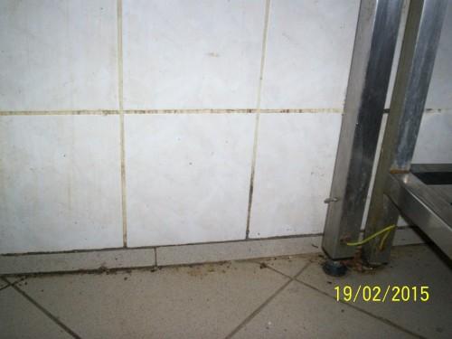 05 Chrudim podlaha a stěna v kuchyni