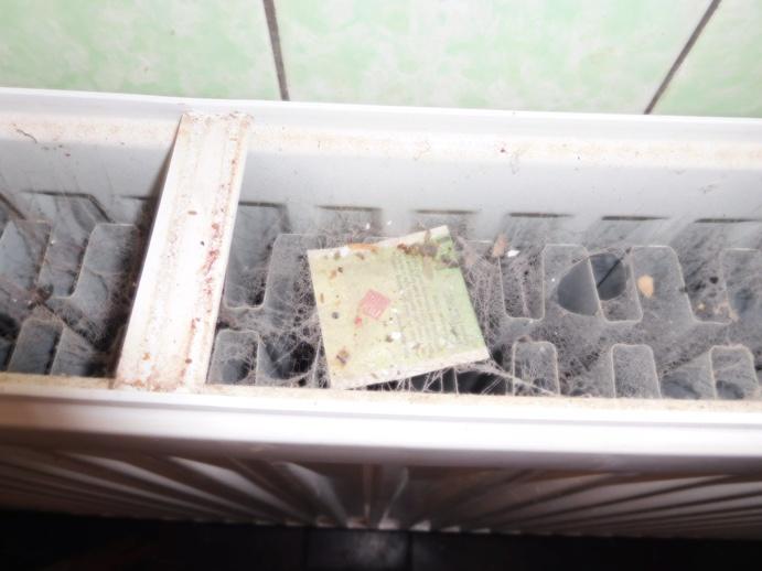 CR radiátor v kuchyni