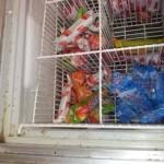 mrazící zařízení pro skladování zmrzliny