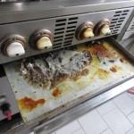 plíseň v zásuvce sporáku v kuchyni