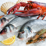 ryby a  nebezpečí